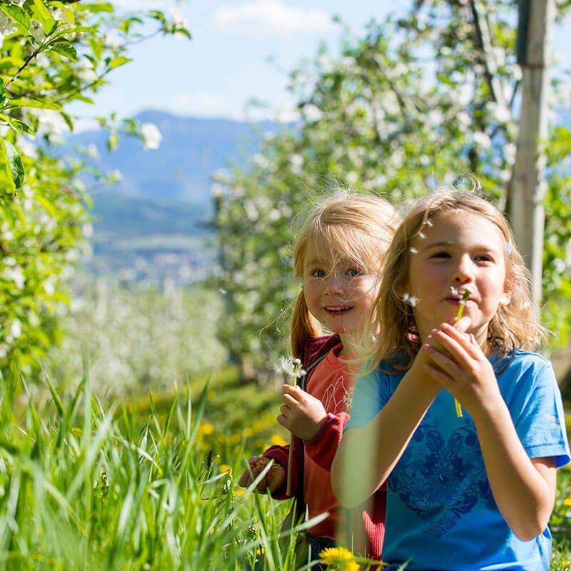 Frühling Südtirol