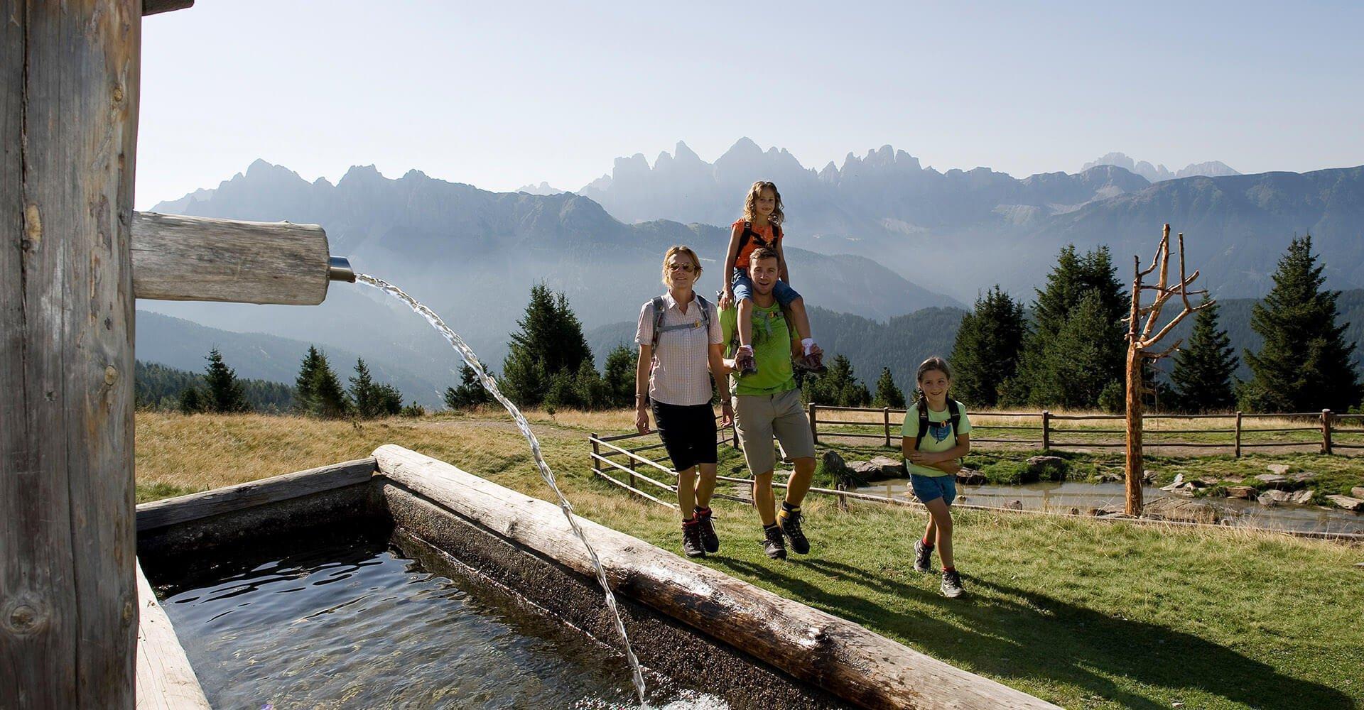 Sommerträume in den Dolomiten