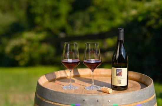 Wine Farm Prackfol 20