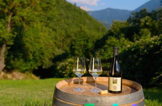 Wine Farm Prackfol 21
