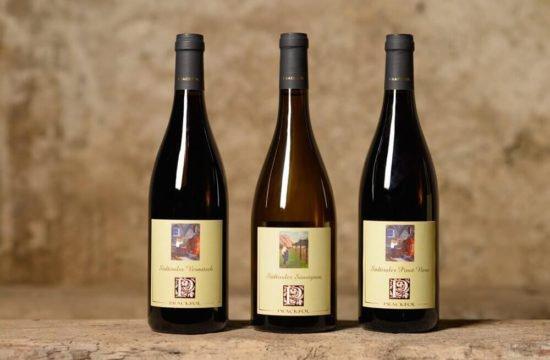 Wine Farm Prackfol 26